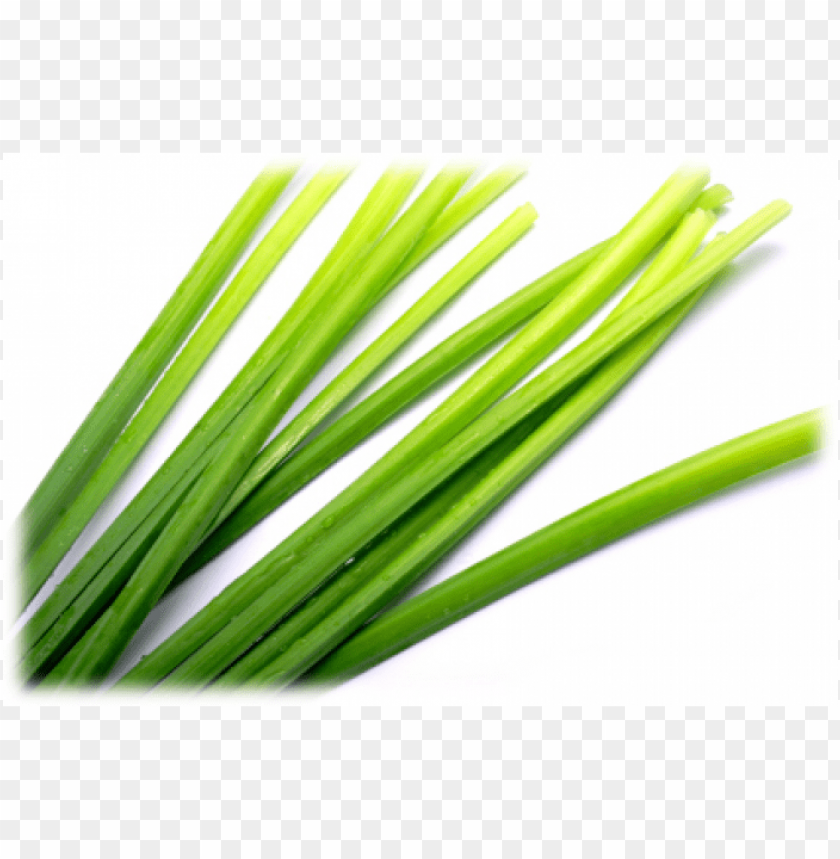 free PNG citronella PNG image with transparent background PNG images transparent