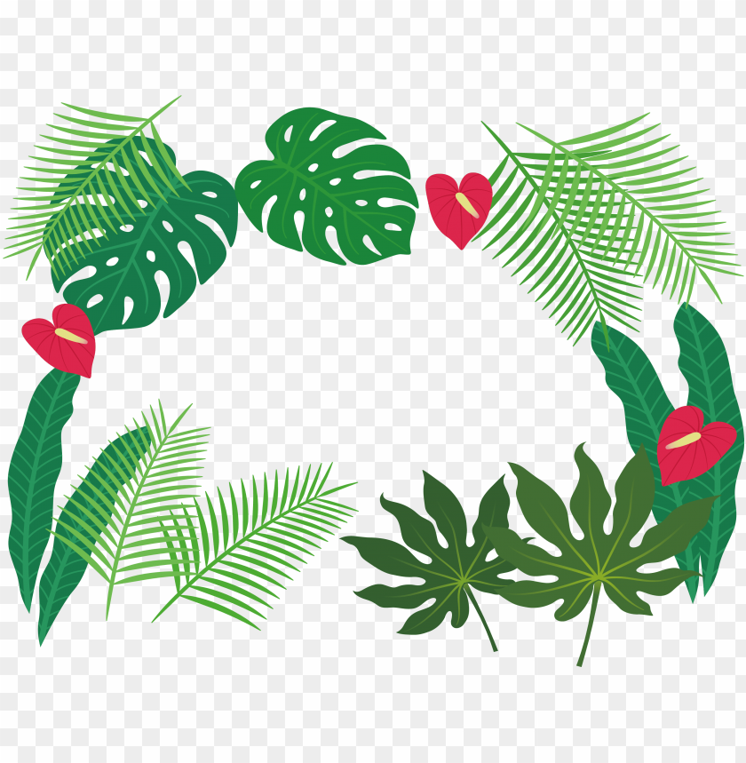 free PNG clip art plant leaves - tropical leaves borders PNG image with transparent background PNG images transparent
