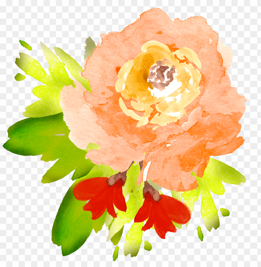 free PNG clip art royalty free library free floral elements - transparent flowers watercolor orange PNG image with transparent background PNG images transparent