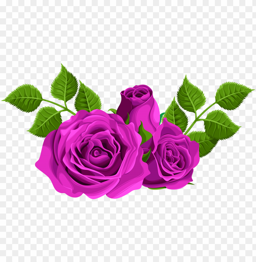 free PNG clip black and white download decorative png clip art - pink roses clip art PNG image with transparent background PNG images transparent
