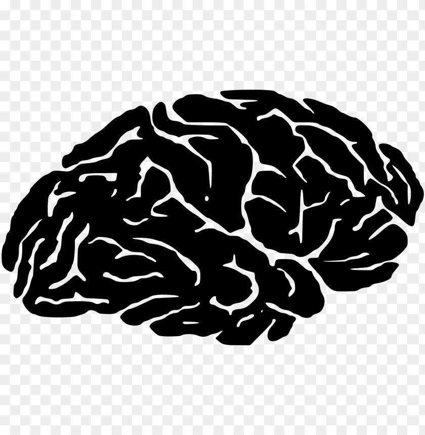 free PNG clipart brain transparent danasria top - brain silhouette PNG image with transparent background PNG images transparent