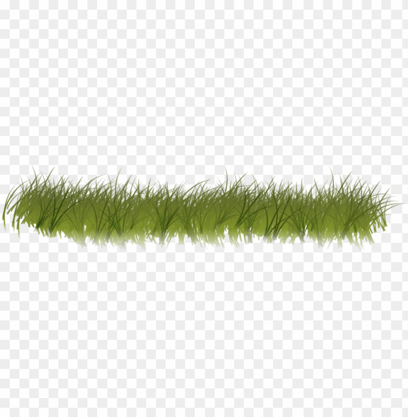 free PNG clipart grass forest grass - forest grass transparent PNG image with transparent background PNG images transparent
