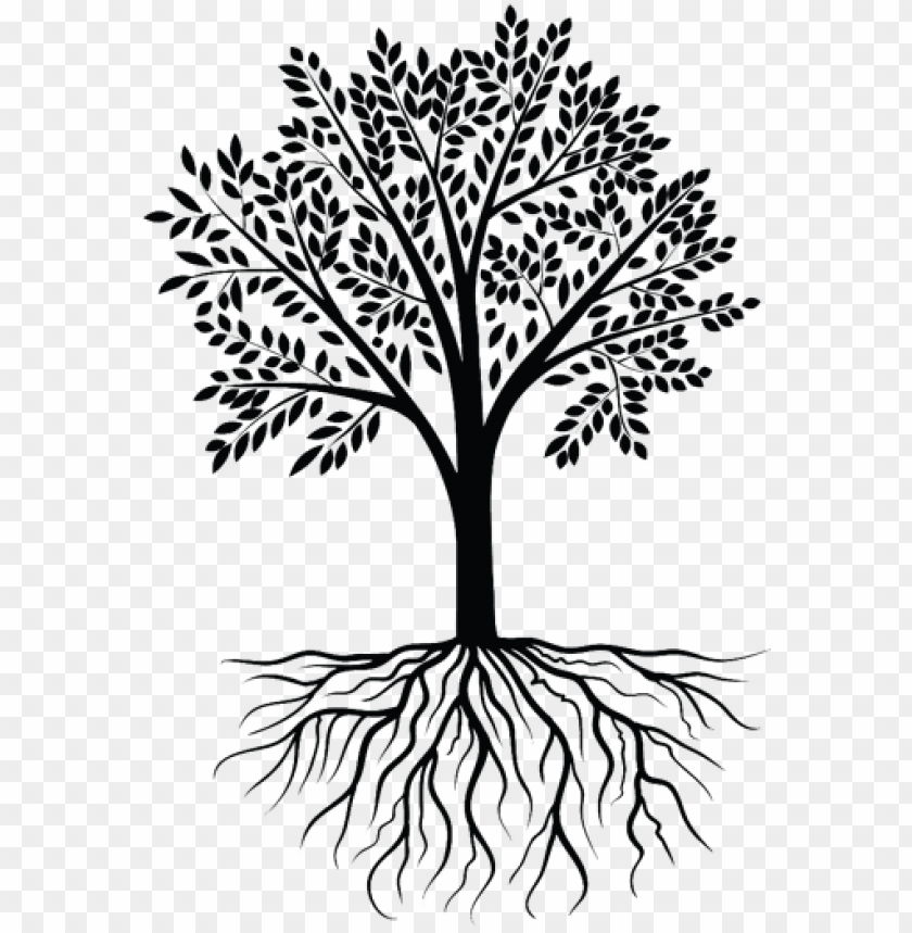 clipart transparent clip art clipart transprent png - transparent tree with roots PNG image with transparent background@toppng.com