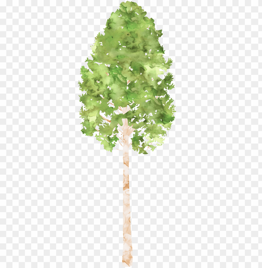 free PNG clipart tree watercolor - watercolor painti PNG image with transparent background PNG images transparent