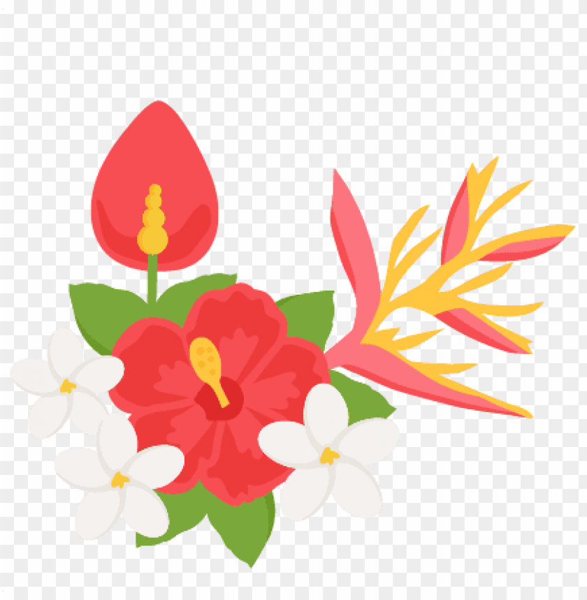 free PNG clipart tropical flowers - tropical flowers clipart PNG image with transparent background PNG images transparent