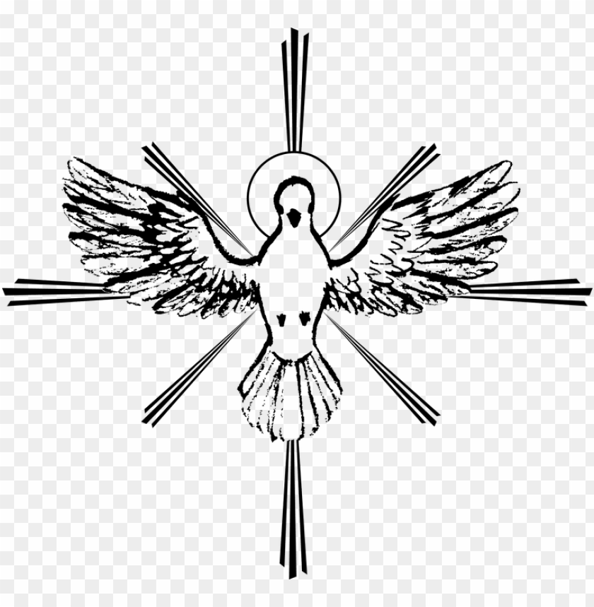 free PNG clipart white dove sketch - holy spirit dove drawi PNG image with transparent background PNG images transparent