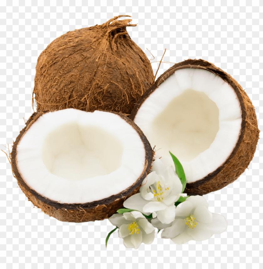 free PNG Download coconut png images background PNG images transparent