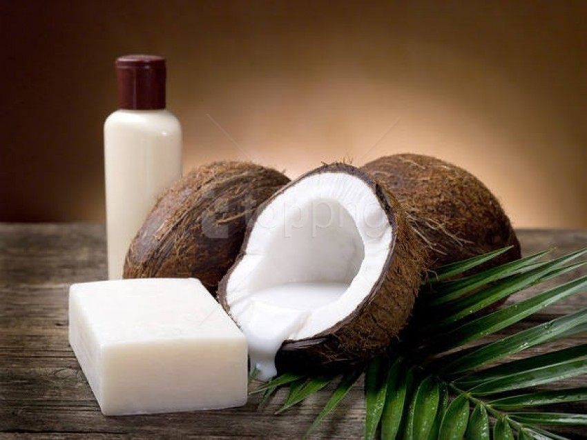free PNG coconut soap and lotion background best stock photos PNG images transparent