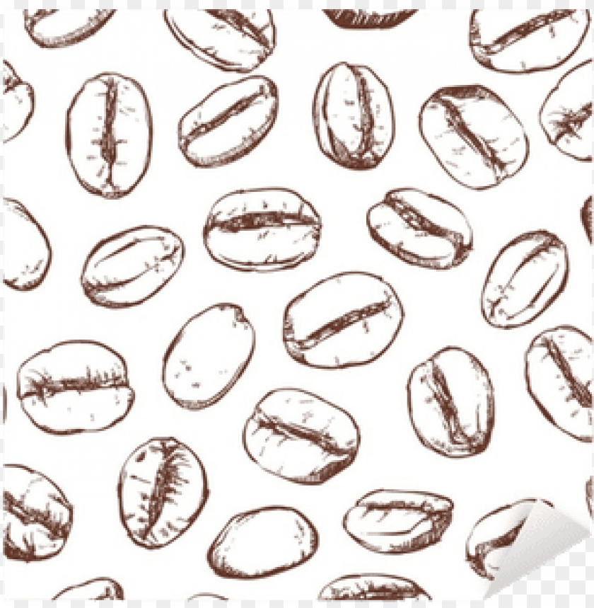 free PNG coffee bean pattern including seamless on white background, - coffee bean patter PNG image with transparent background PNG images transparent