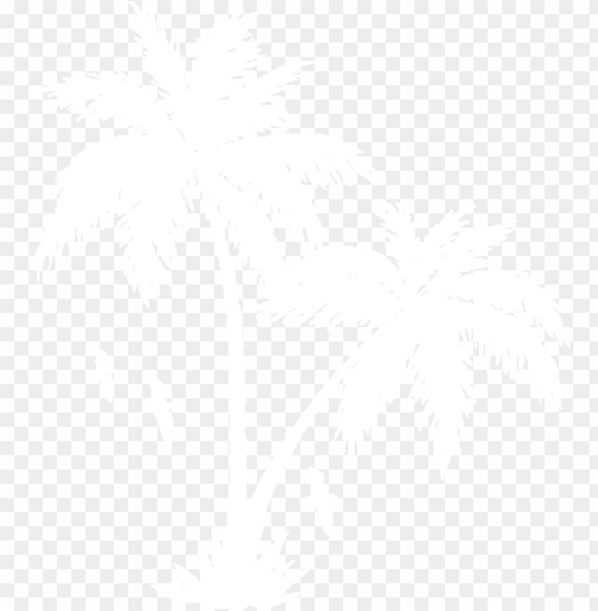 free PNG collection of free transparent white palm tree download - palm tree white PNG image with transparent background PNG images transparent