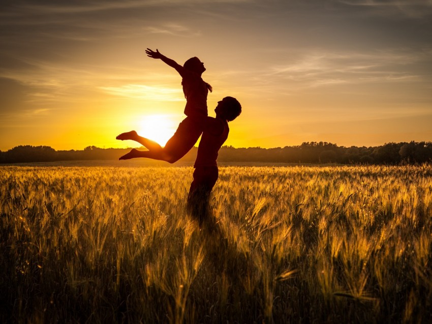 free PNG couple, love, sunset, field, grass, silhouettes background PNG images transparent