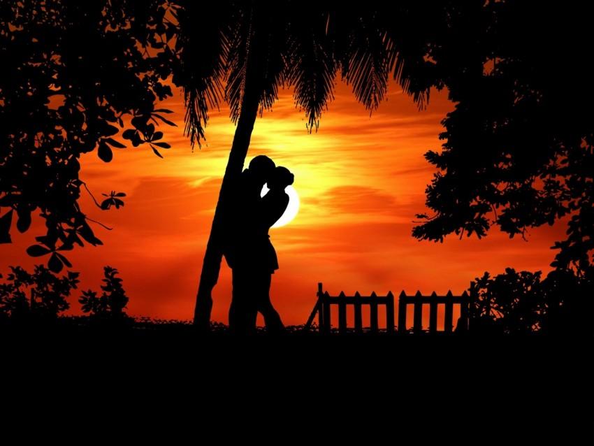 free PNG couple, silhouettes, hugs, romance, love, tropics background PNG images transparent