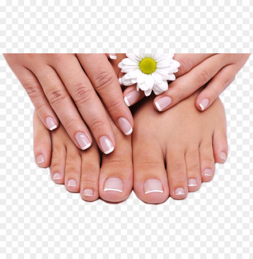 free PNG cuidado de pies y manos - manicure pedicure PNG image with transparent background PNG images transparent