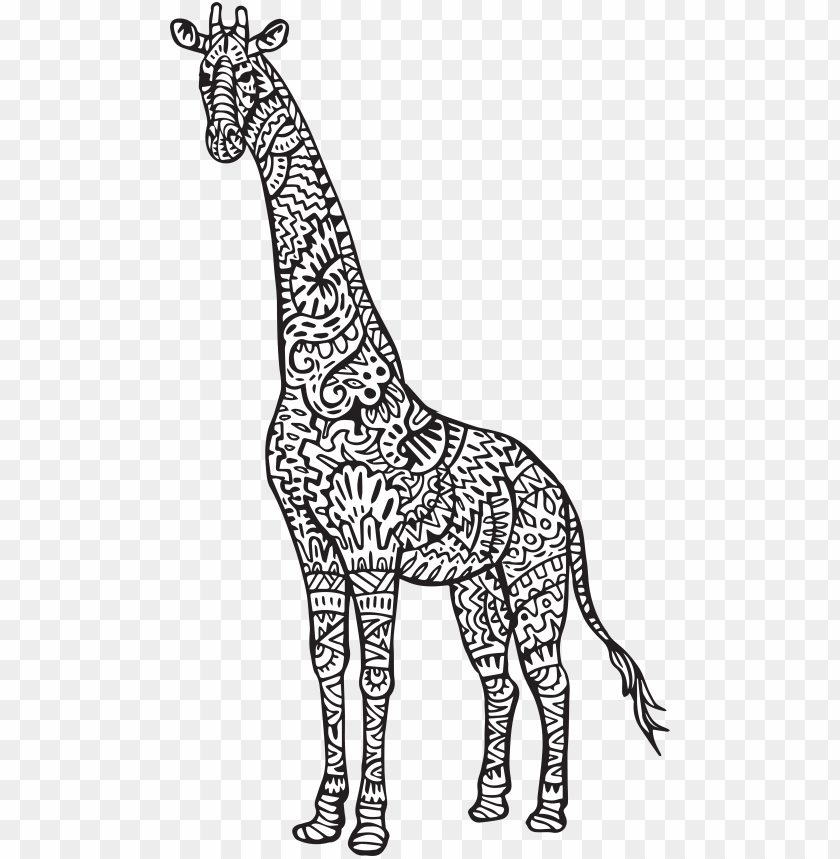 Cute Giraffe Coloring Pages Chaihuthuytinh - Notebook Journal  Dot-grid,graph,lined,blank No Lined PNG Image With Transparent Background  TOPpng