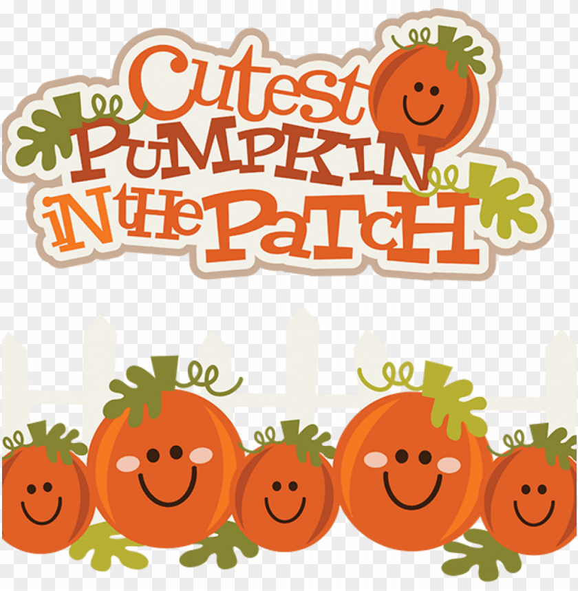 free PNG cute pumpkin PNG image with transparent background PNG images transparent