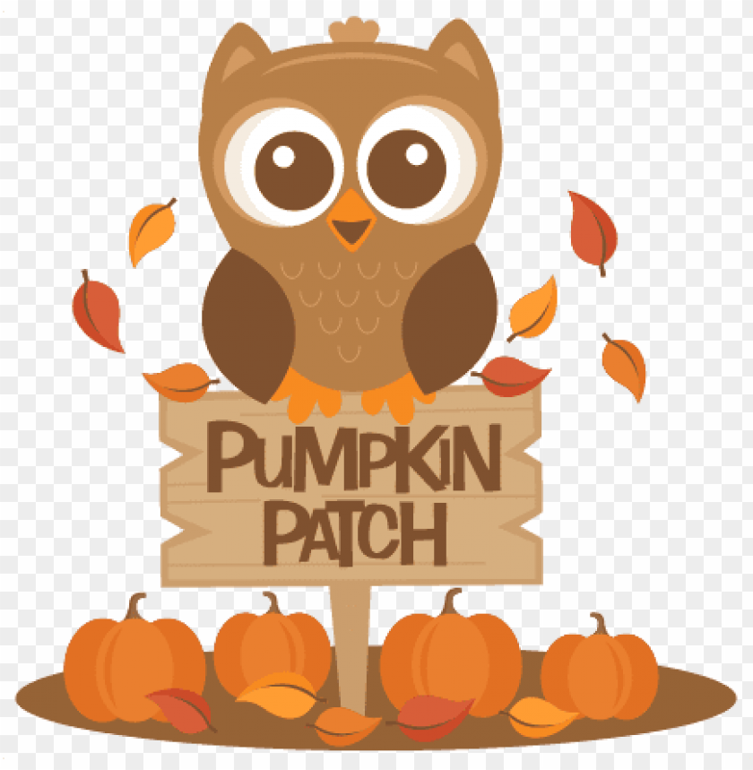 free PNG cute pumpkin patch PNG image with transparent background PNG images transparent