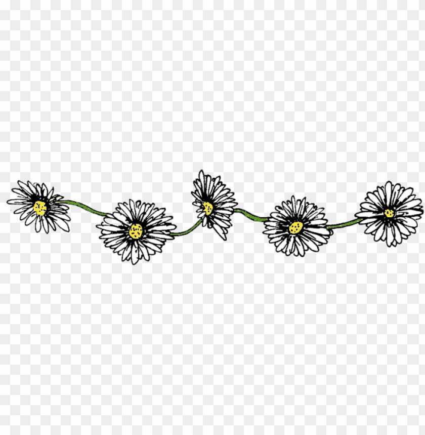 daisy chain - flower chain PNG image with transparent background@toppng.com