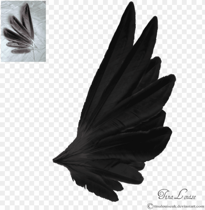 free PNG dark angel wings by tinalouiseuk on deviantart - angel wings side view black PNG image with transparent background PNG images transparent