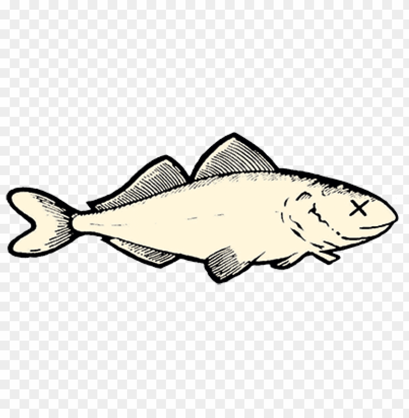 Dead Fish Png Image With Transparent Background Toppng