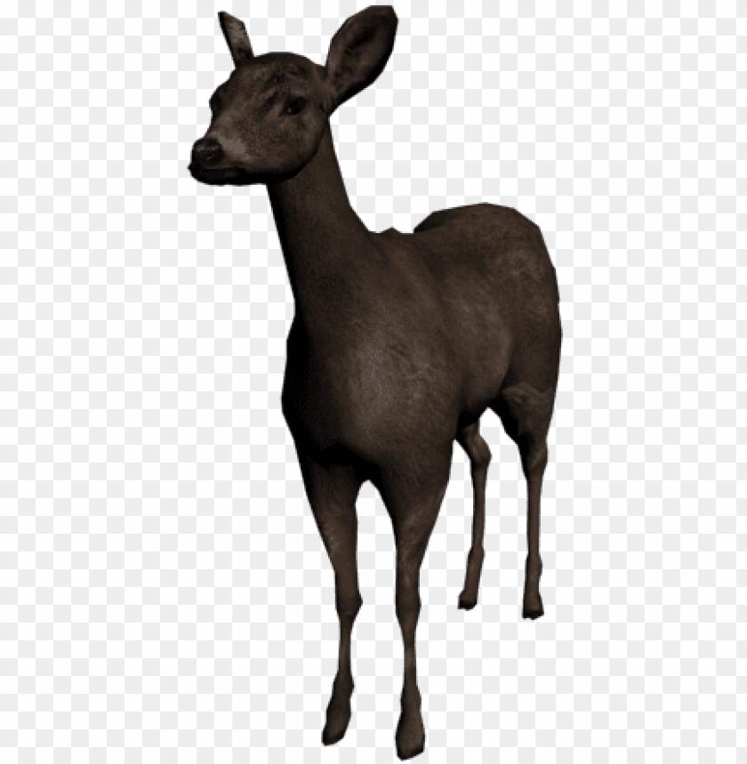 free PNG deer - 3d deer PNG image with transparent background PNG images transparent