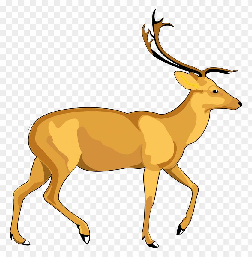 free PNG Download Deer Vector png images background PNG images transparent