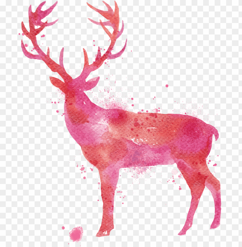 free PNG deer watercolor painting drawing - deer watercolor PNG image with transparent background PNG images transparent