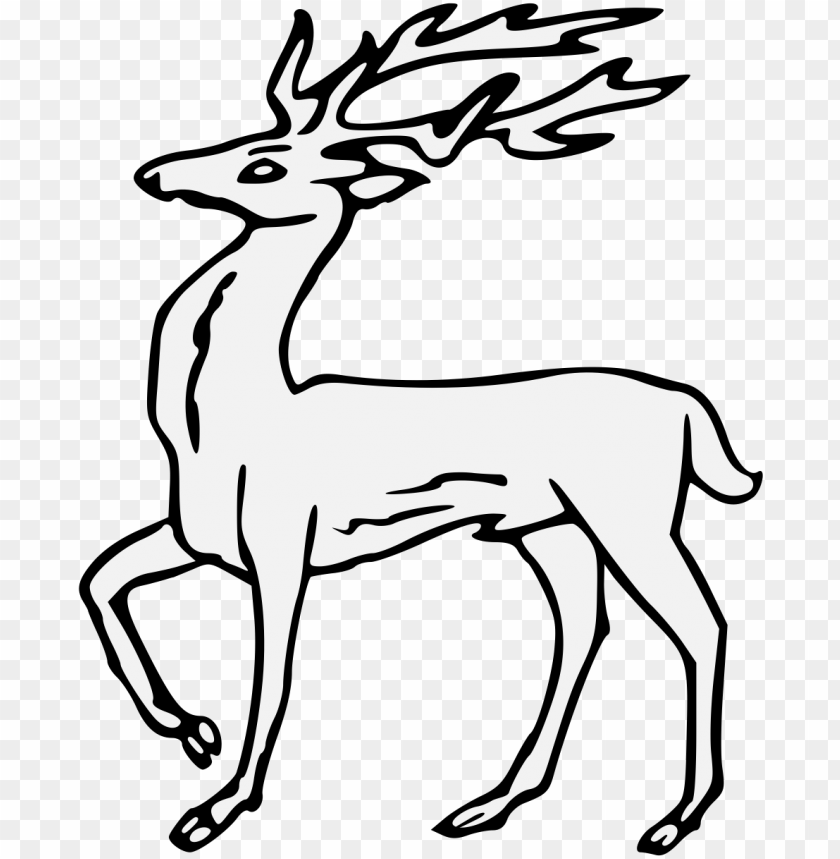 free PNG details, png - roe deer PNG image with transparent background PNG images transparent