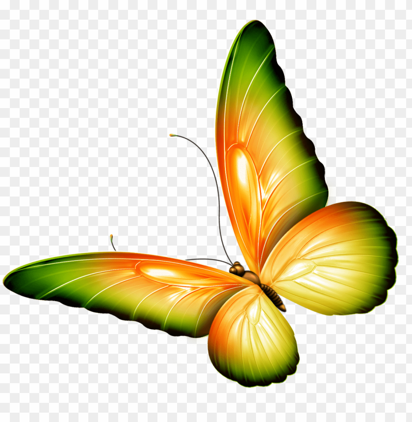 Clipartr with a Flower and Butterfly