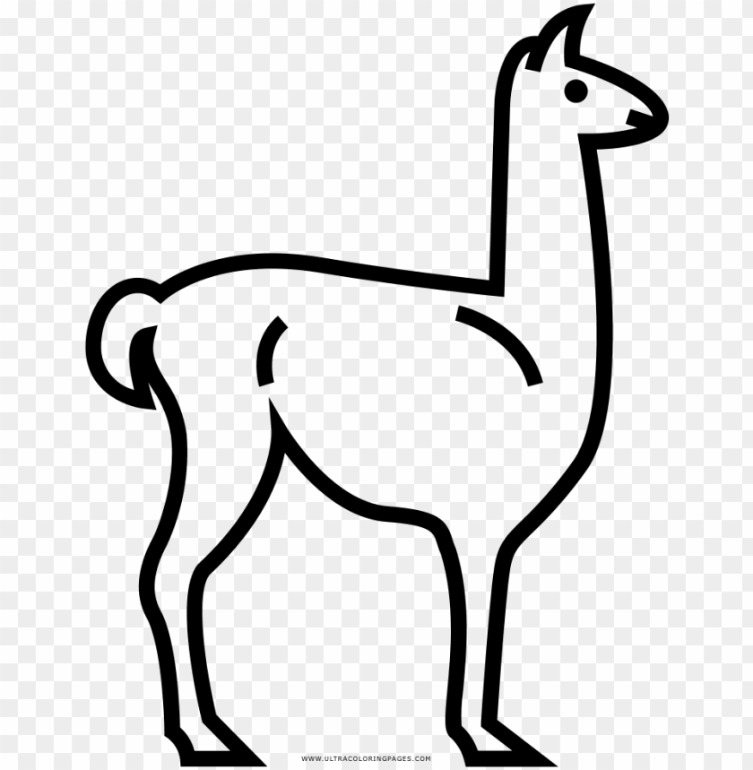 free PNG dibujo de llama para colorear ultra coloring pages - dibujar una llama facil PNG image with transparent background PNG images transparent