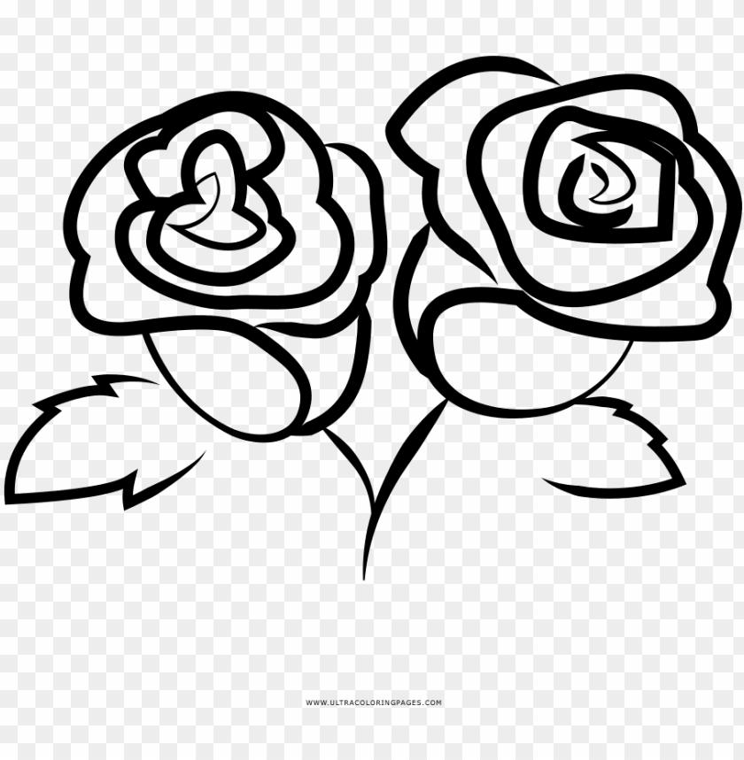 Dibujo De Rosas Para Colorear Frida Restaurant Springfield Mo Png Image With Transparent Background Toppng