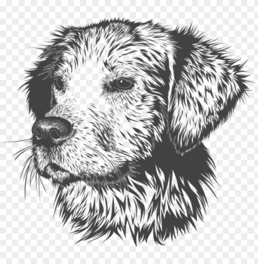 free PNG dog, animal, domestic animal, doggie - animal head vector black white PNG image with transparent background PNG images transparent