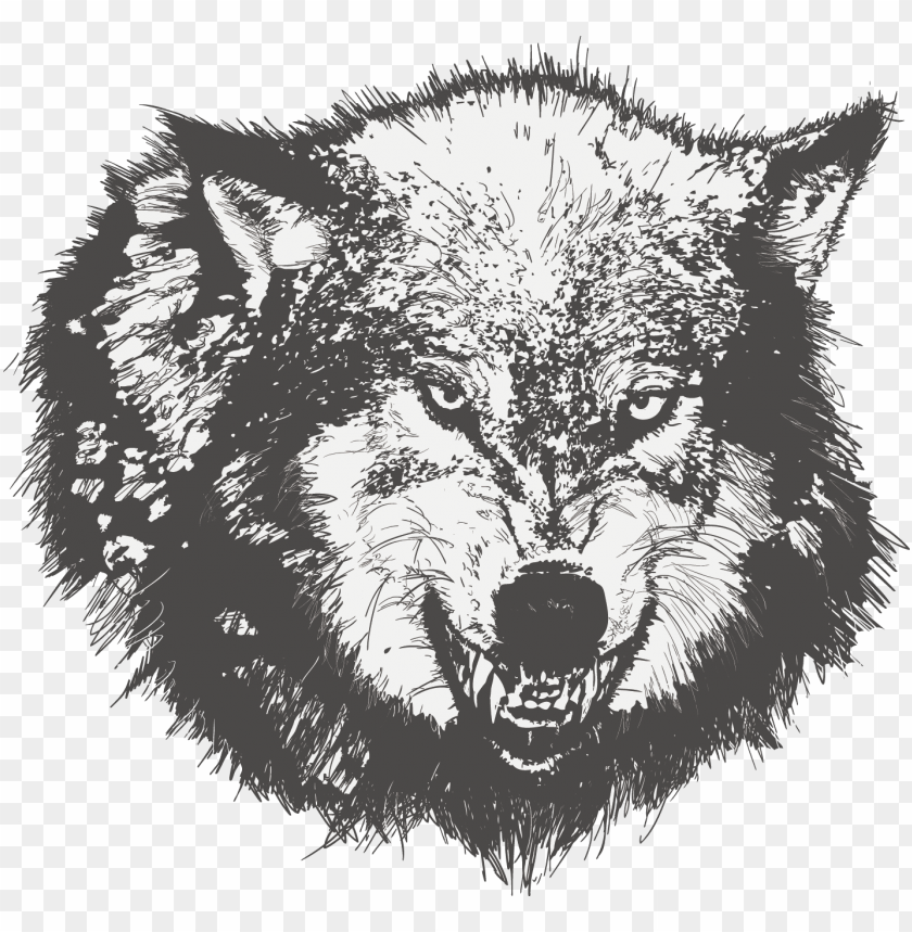 free PNG dog drawing black wolf sketch painted transprent - wolf angry face vector PNG image with transparent background PNG images transparent