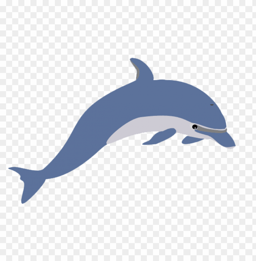 Download dolphin illustration png images background@toppng.com