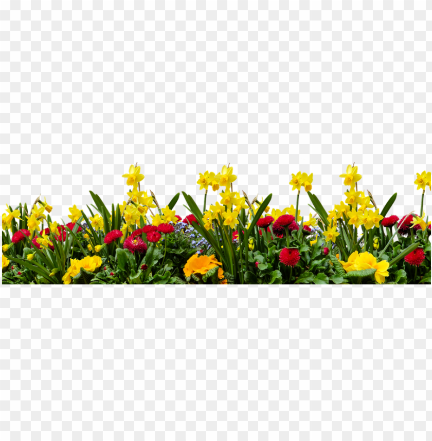 download flower garden in transparent background clipart nature with birds and flower png image with transparent background toppng transparent background clipart nature
