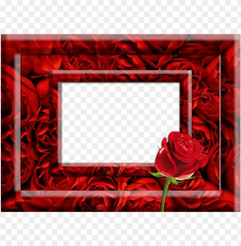 free PNG download red rose photo frame clipart garden roses - red rose photo frames PNG image with transparent background PNG images transparent