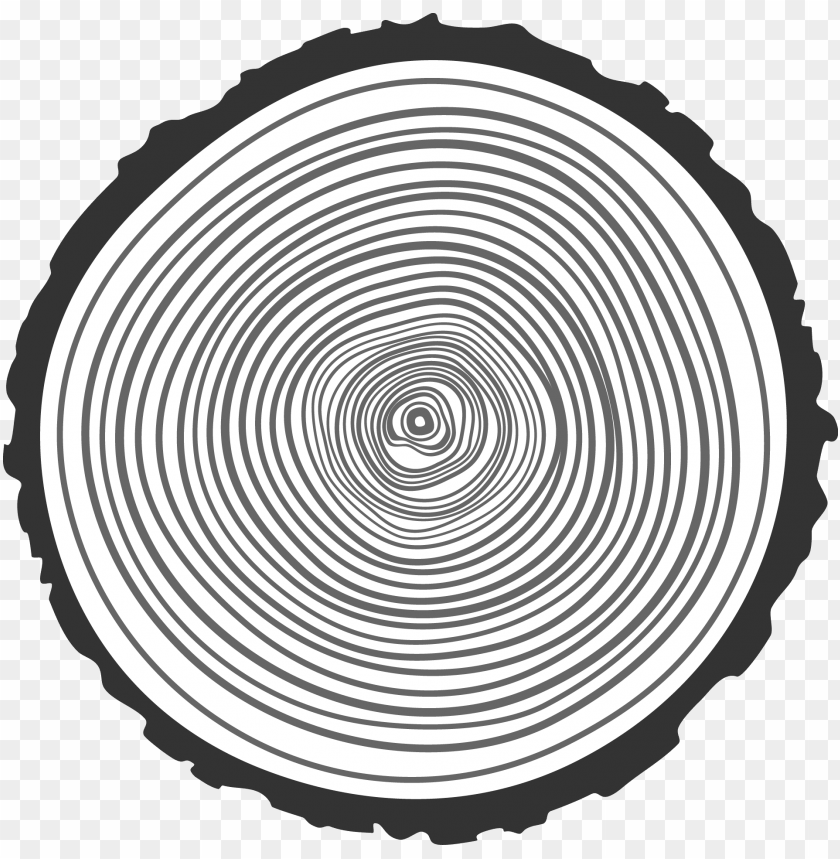 free PNG drawn ring hand drawn - transparent tree ring PNG image with transparent background PNG images transparent