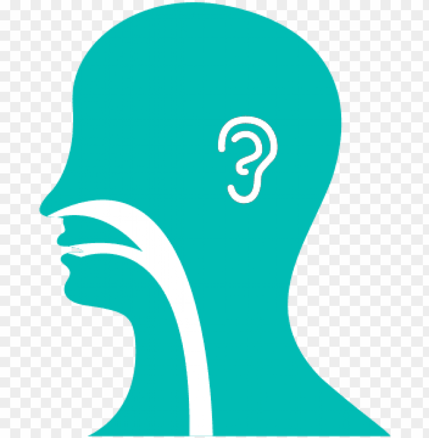 free PNG ear, nose, throat illustration - ear nose and throat logo PNG image with transparent background PNG images transparent