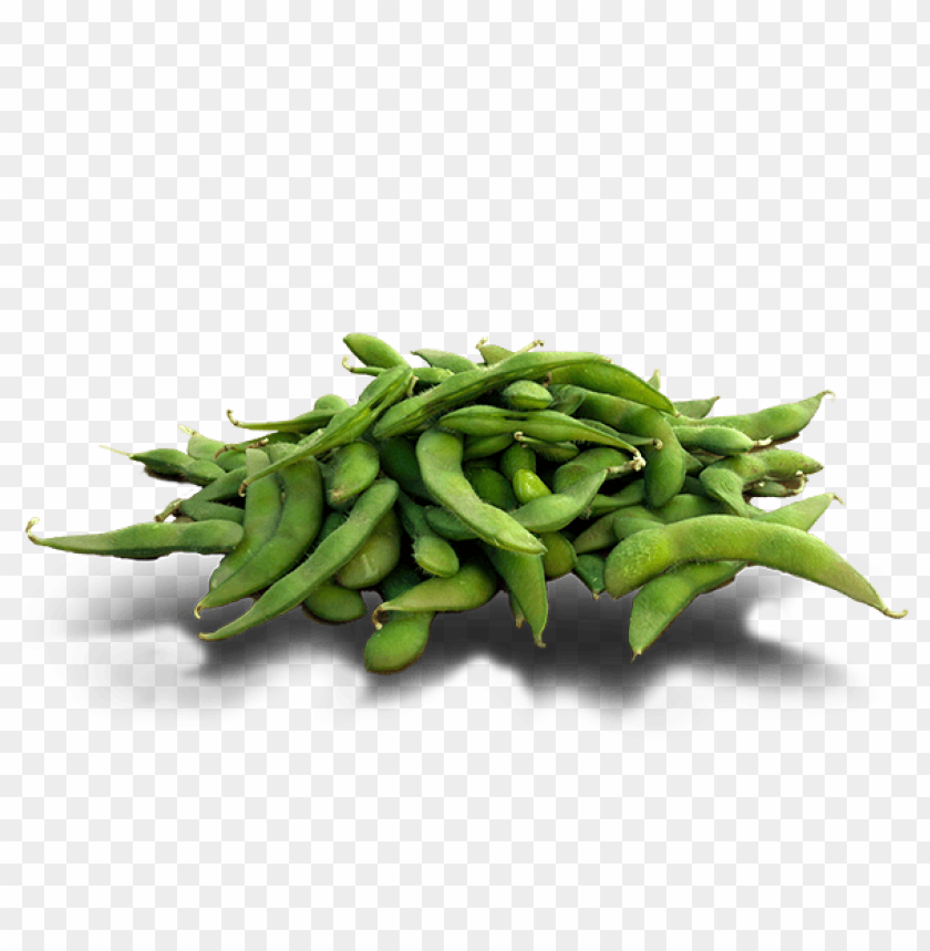free PNG Download edamame png pic png images background PNG images transparent