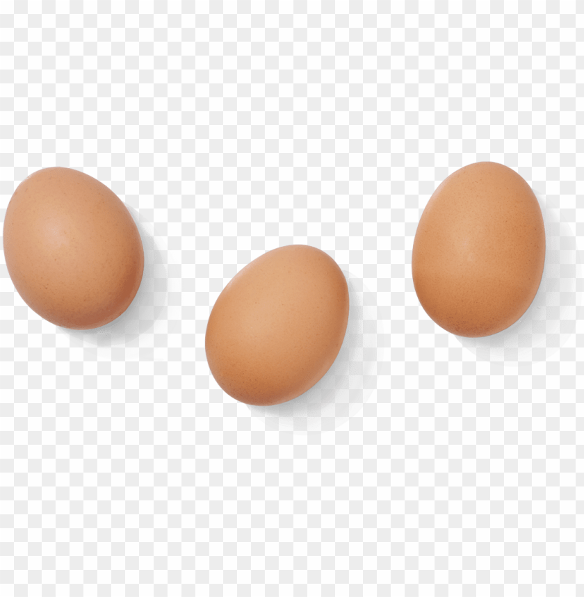 free PNG eggs png free download - 3 eggs transparent PNG image with transparent background PNG images transparent