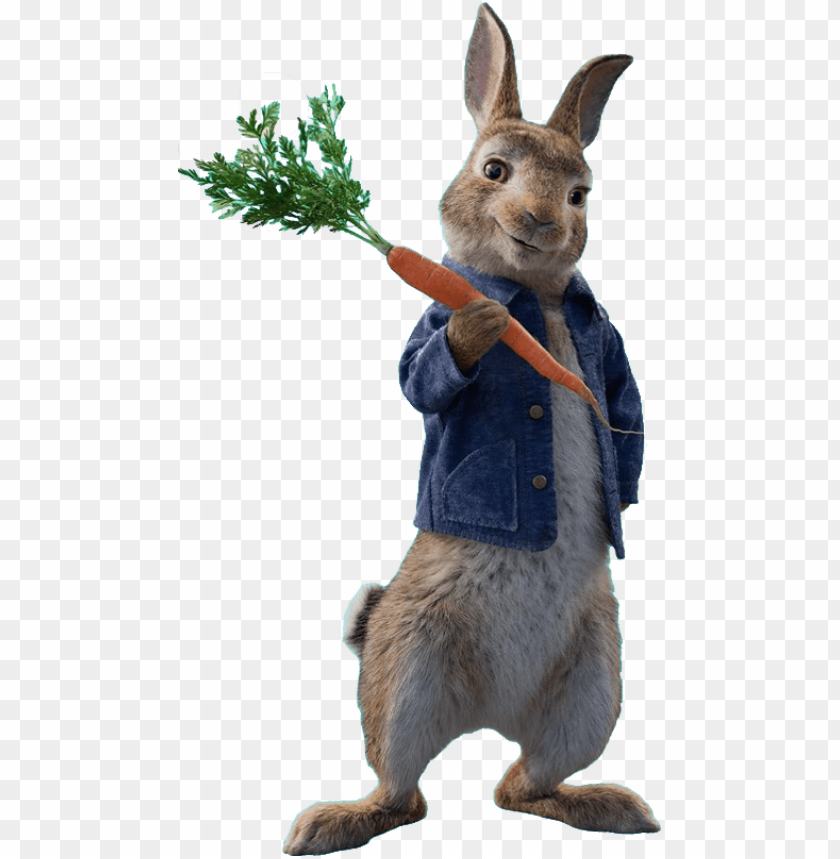 free PNG eter rabbit - peter rabbit movie PNG image with transparent background PNG images transparent