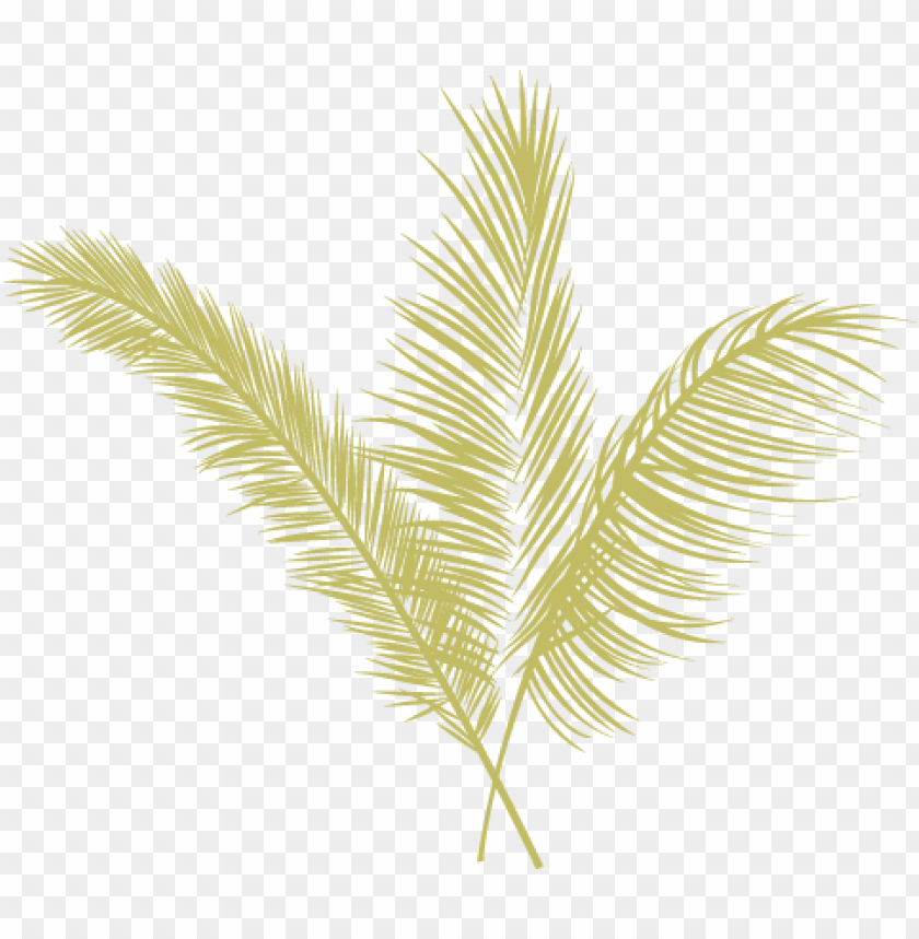 free PNG eugene local food carts - yellow palm leaves PNG image with transparent background PNG images transparent