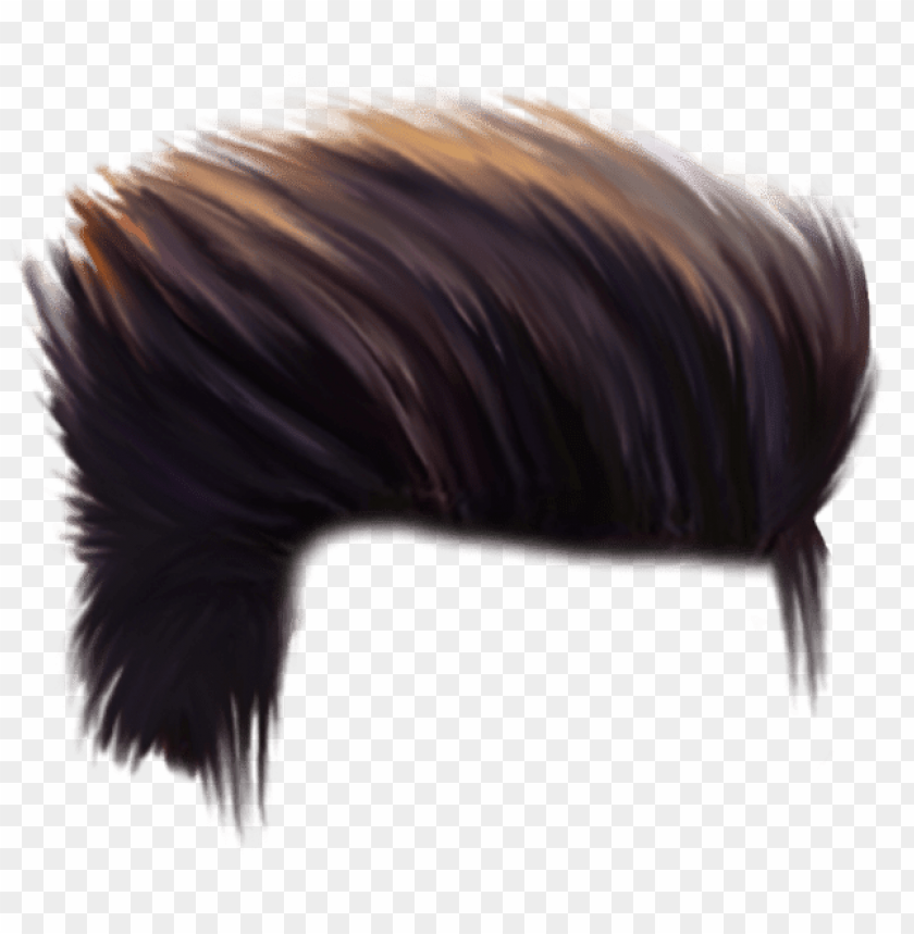 free PNG ew cb hair png hd download cb hair png for picsart - hair png for picsart PNG image with transparent background PNG images transparent