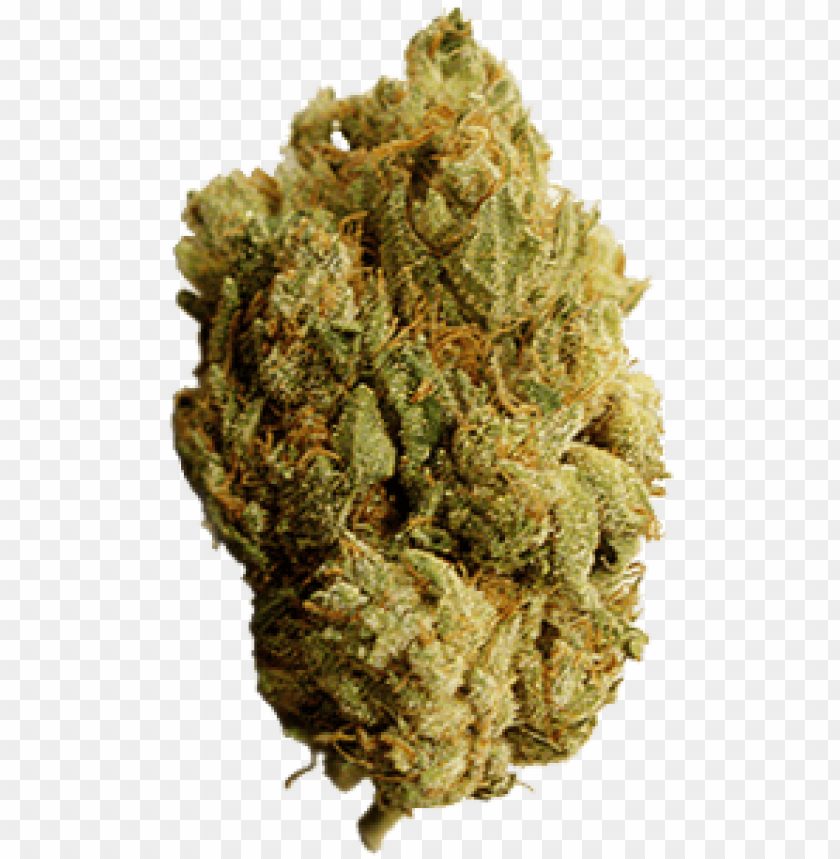 free PNG ew marijuana leaf transparent background 13 weed leaf - medical marijuana PNG image with transparent background PNG images transparent