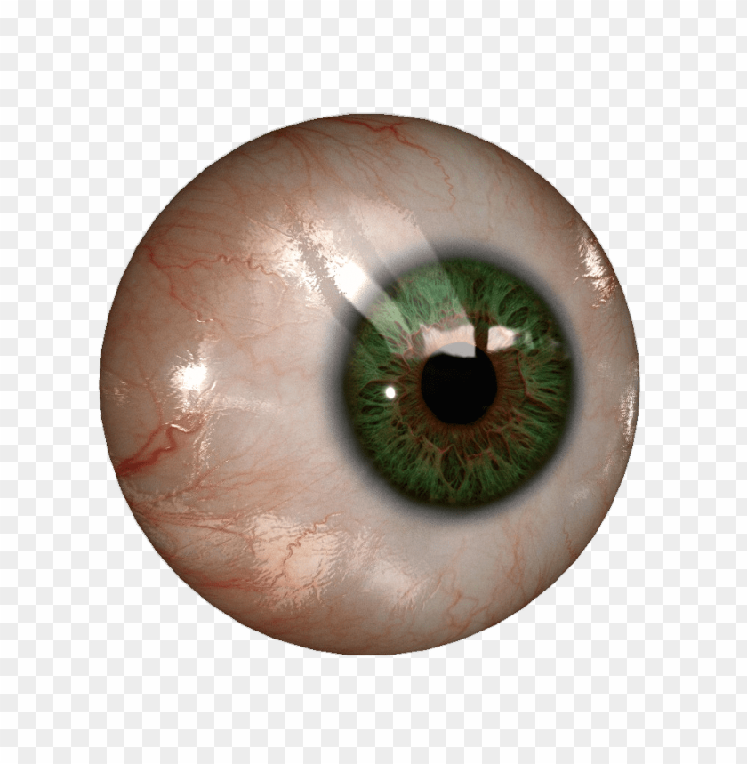 free PNG Download eye png images background PNG images transparent