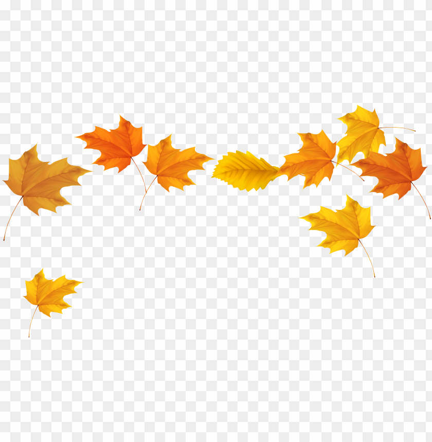 free PNG fall leaves clip art chalkboard stair ideas - fall leaves transparent background PNG image with transparent background PNG images transparent