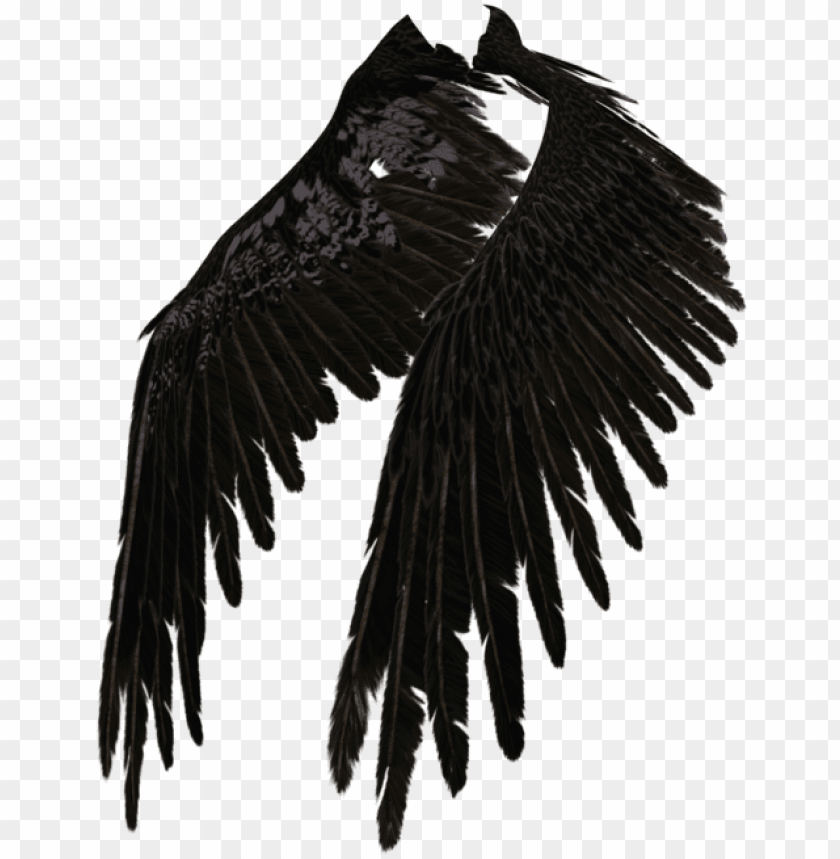 free PNG fallen angel wing png - dark angel wings transparent PNG image with transparent background PNG images transparent