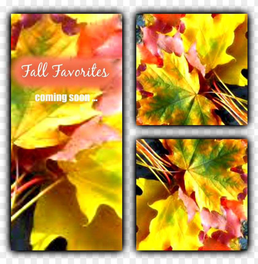 free PNG fallfavorites - fall leaves PNG image with transparent background PNG images transparent