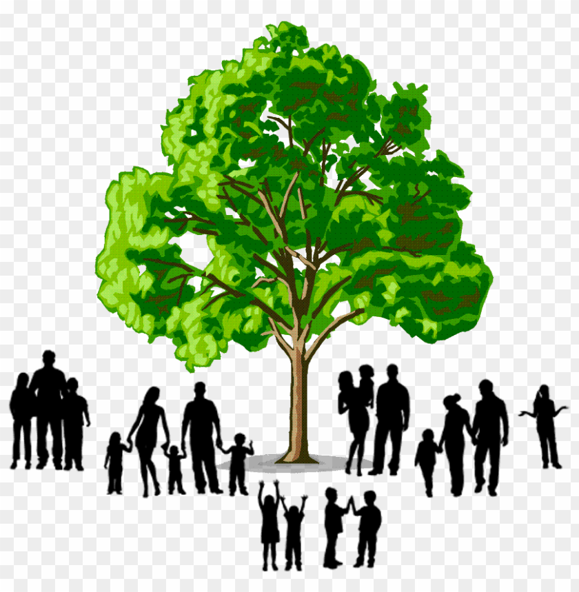 free PNG family tree logo PNG image with transparent background PNG images transparent
