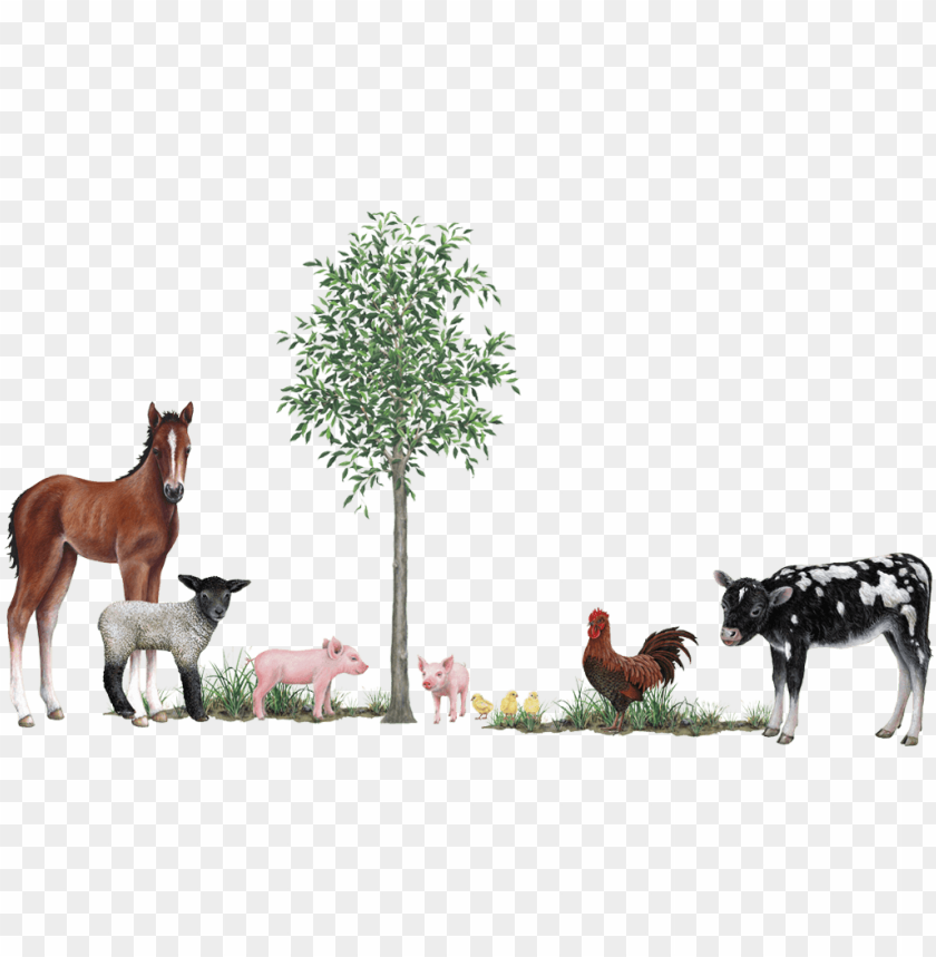 free PNG farm animals collection wall decals stickers - 3d wall stickers farm animals PNG image with transparent background PNG images transparent