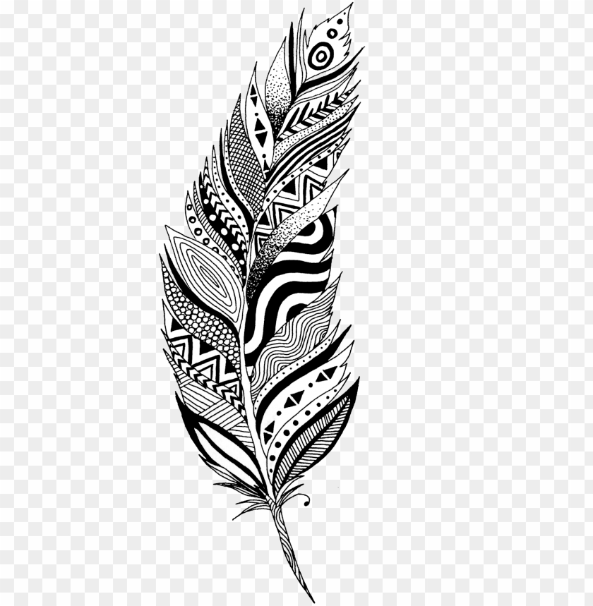 Feather Clip Art